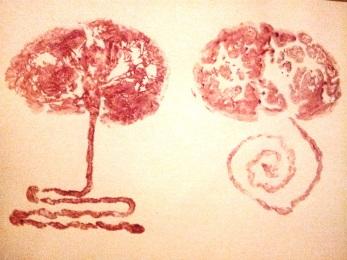 placenta prints